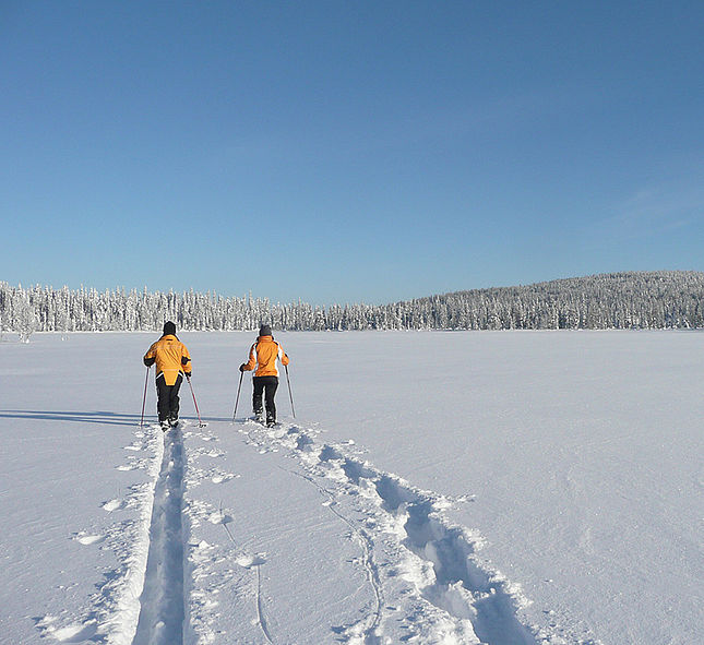 Great Lappland Winter © Great Lappland